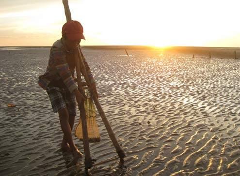 Nạo ngao biển là một nghề rất lâu năm của người dân Sầm Sơn