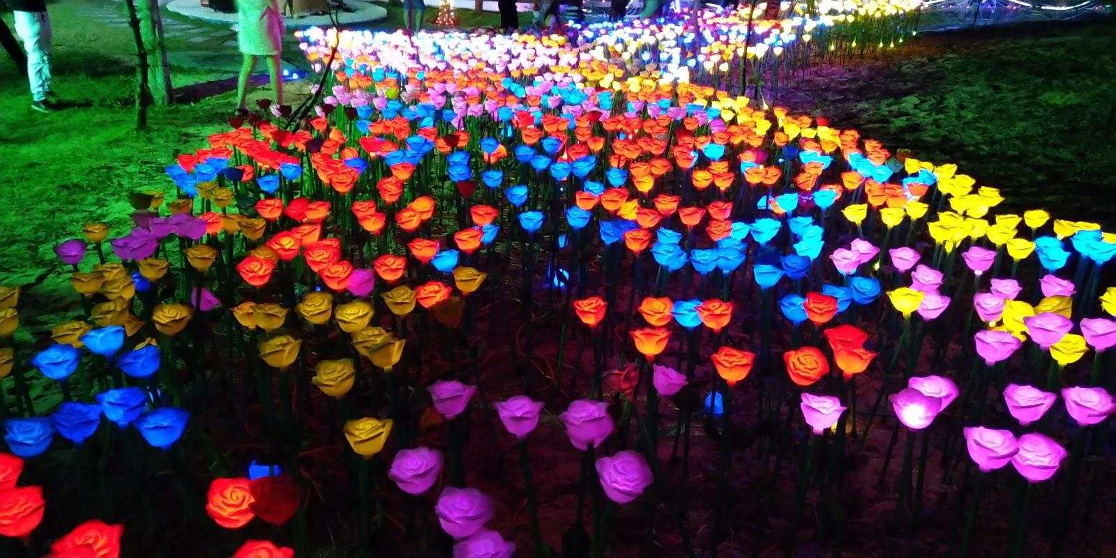vườn hoa ánh sáng